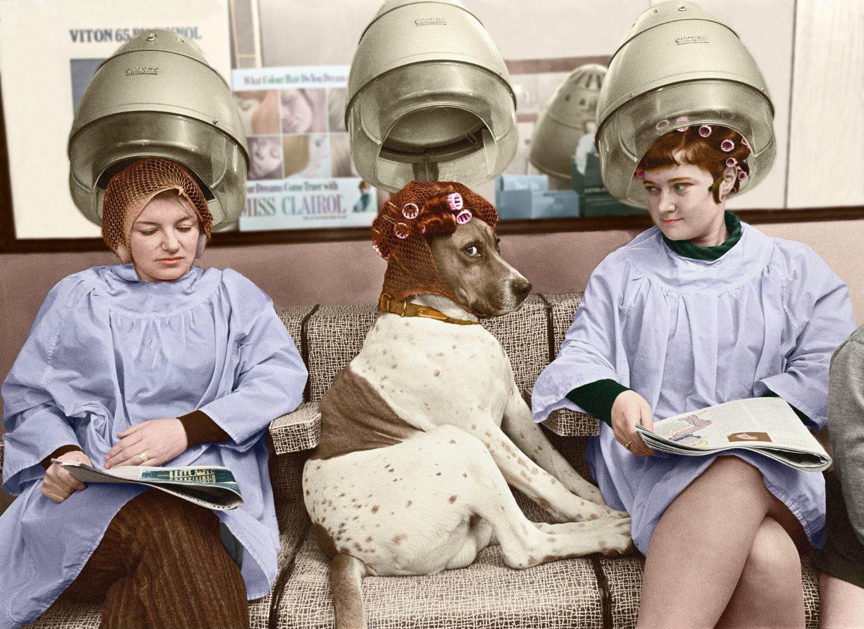 mujeres con ruleros