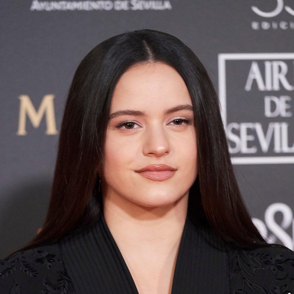Peinados de Rosalía: 10 estilos perfectos para lucir tu melena XL