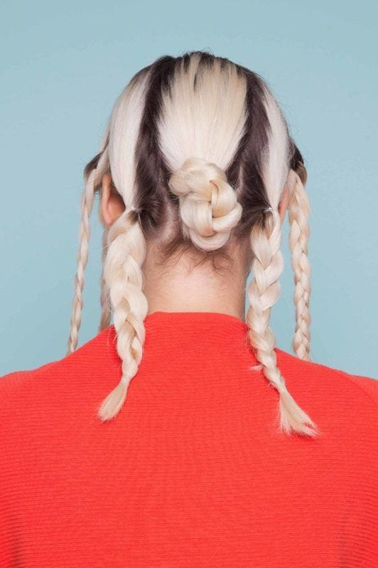 snake braid: braided sections
