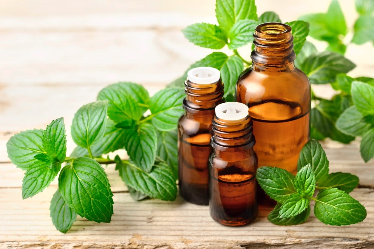 peppermint oil for hair,
