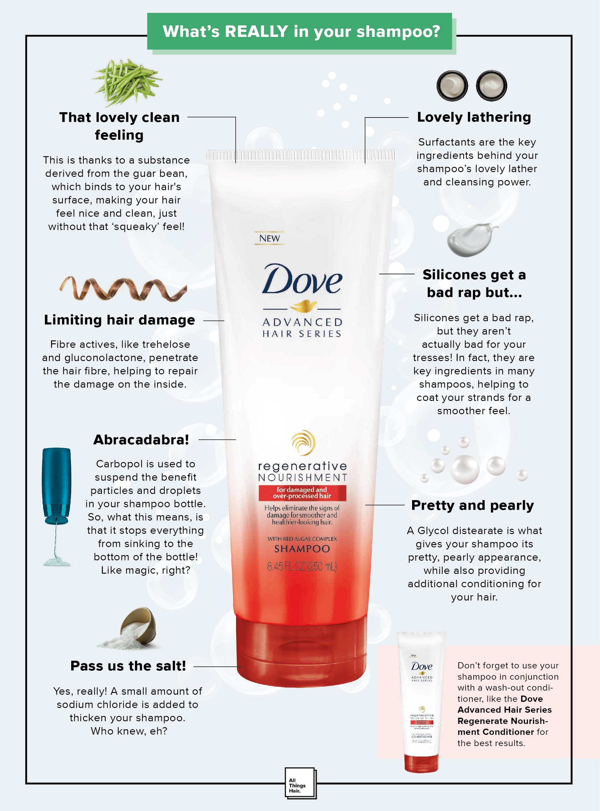 Shampoo: All Things Hair - IMAGE - what's really in your shampoo infographic