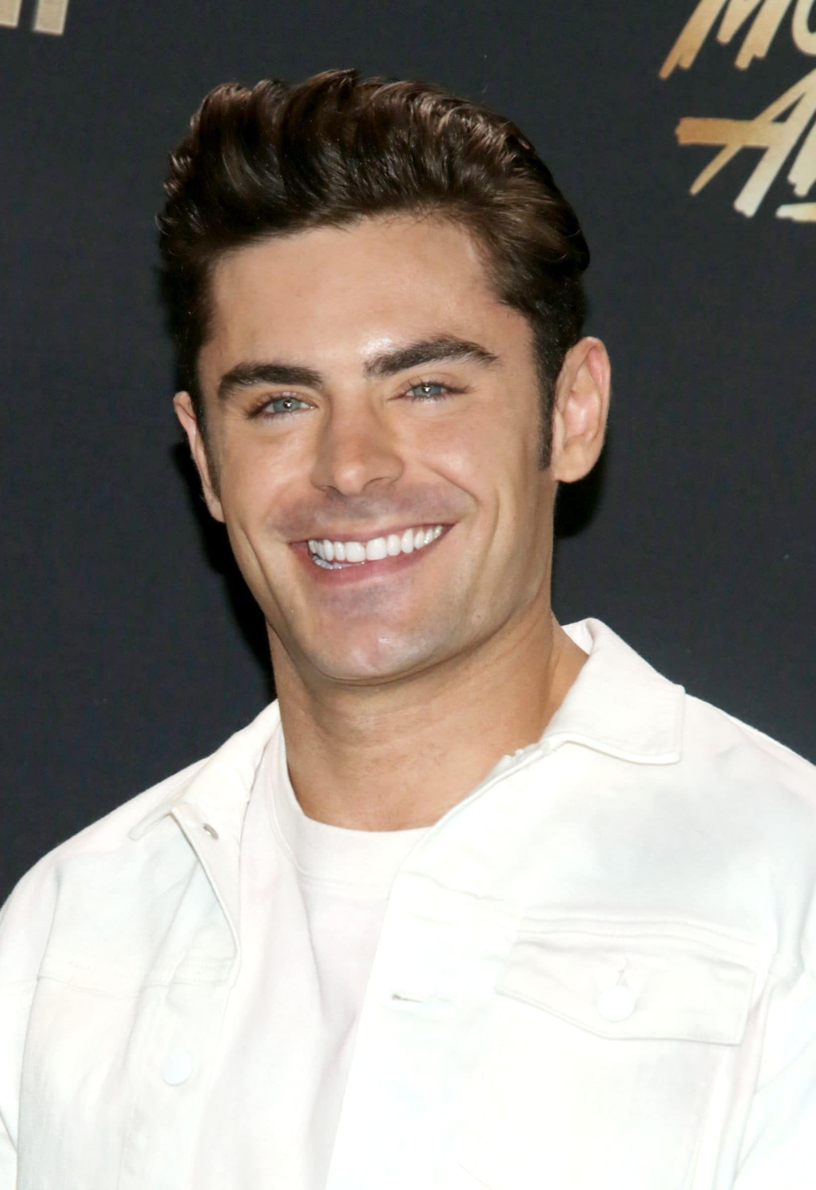 Zac Efron brown hair in pompador style