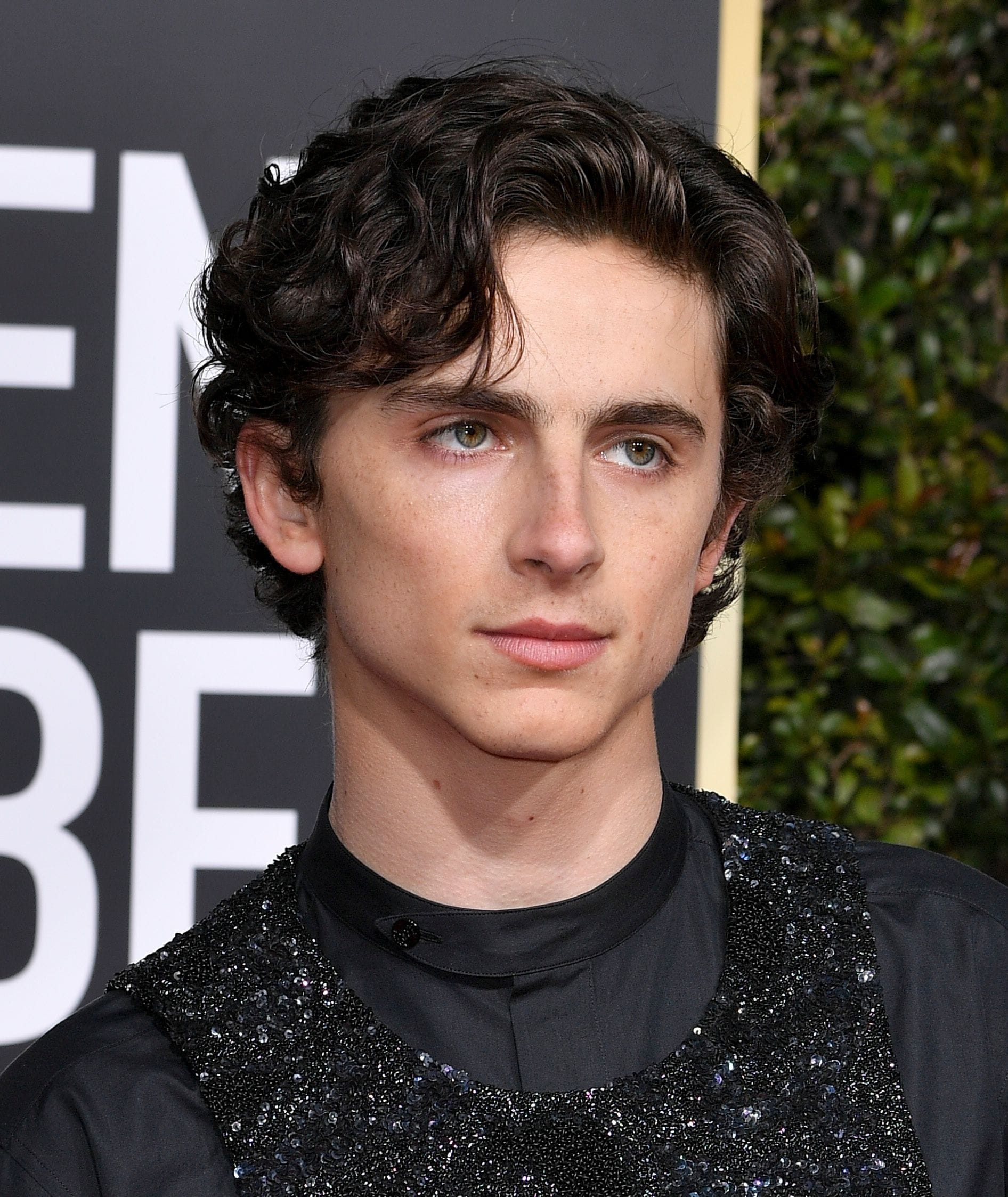 Golden Globes 2019: Close-up of Timothée Chalamet with dark wavy hair