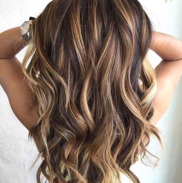 back view of long brown highlighted hair