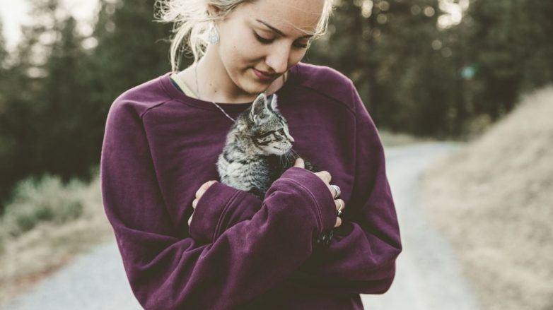 веганская косметика девушка осветленные волосы собранная прическа кот